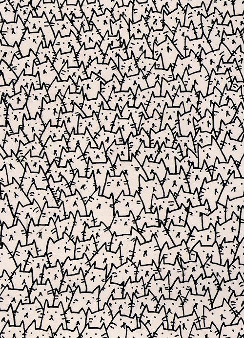 Cat #Phone Wallpaper| http://phonewallpaperideaseugene.blogspot.com