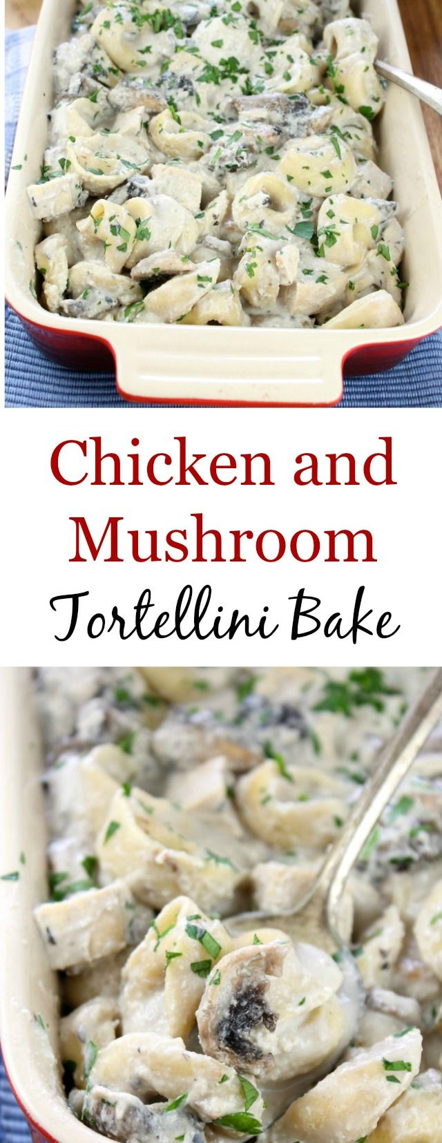 Chicken and Mushroom Tortellini Bake ~ Amazing comfort food. Recipe found at missinthekitchen.com