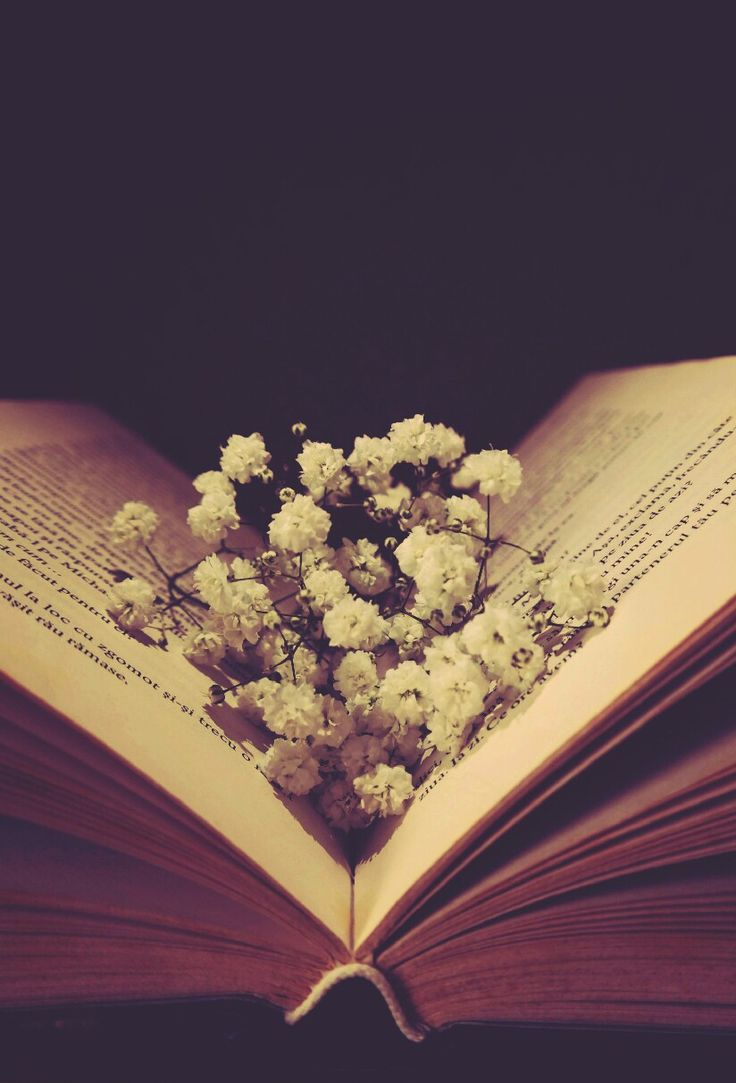 With freedom, books, flowers, and the moon, who could not be happy? ❤️