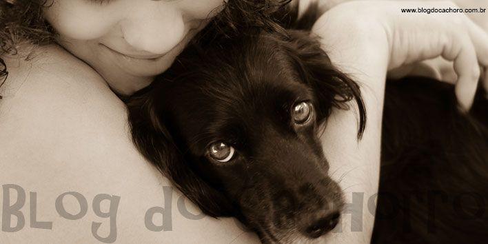 Fotos de Cachorros - Como fazer a imagem perfeita - Blog do Cachorro