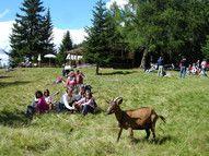 Famiglie in vacanza in Alta Val Pusteria