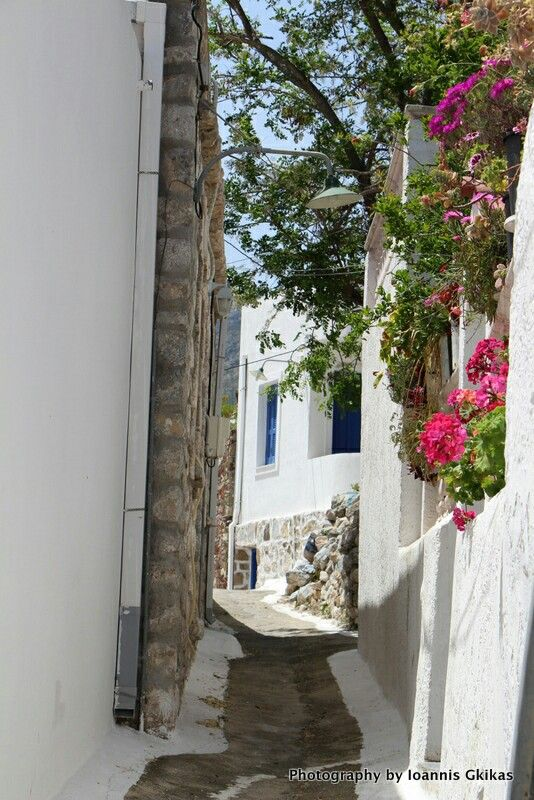 On the island of Tilos island, Greece. - Selected by www.oiamansion.com