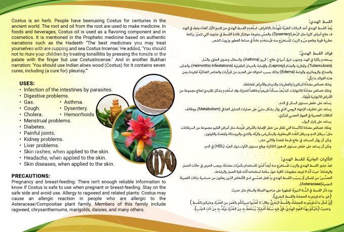 Mk Sanwal I Will Design A Professional Brochure For 25 On Fiverr Com In 2021 Professional Brochure Brochure Design Brochure
