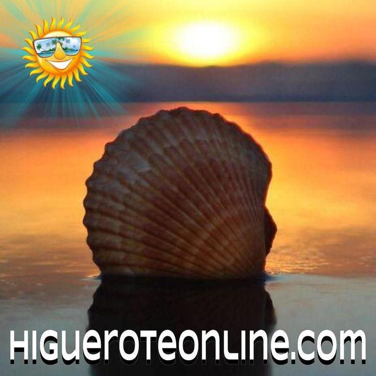 Hay cosas simples que son grandiosas #playa #mar #sol #foto #naturaleza #sea #sunset #atardecer #arena #brisa #higuerote