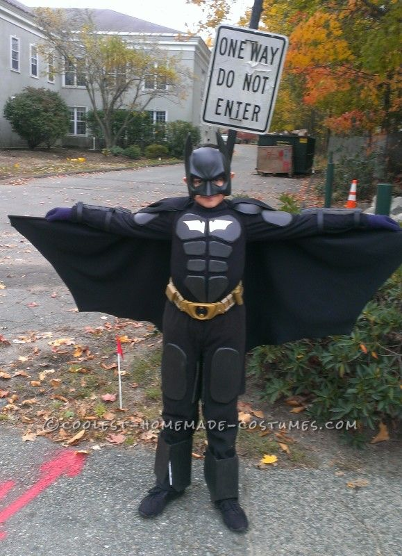 batman halloween costumes for dogs