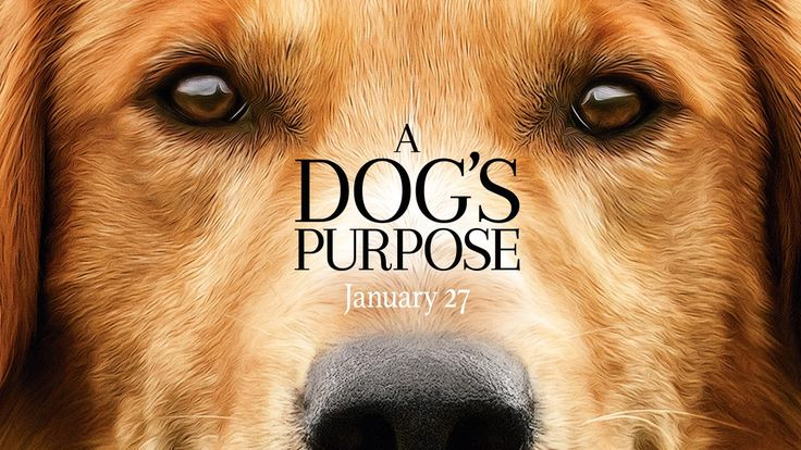 A Dog's Purpose (2017) - Official Trailer (HD)