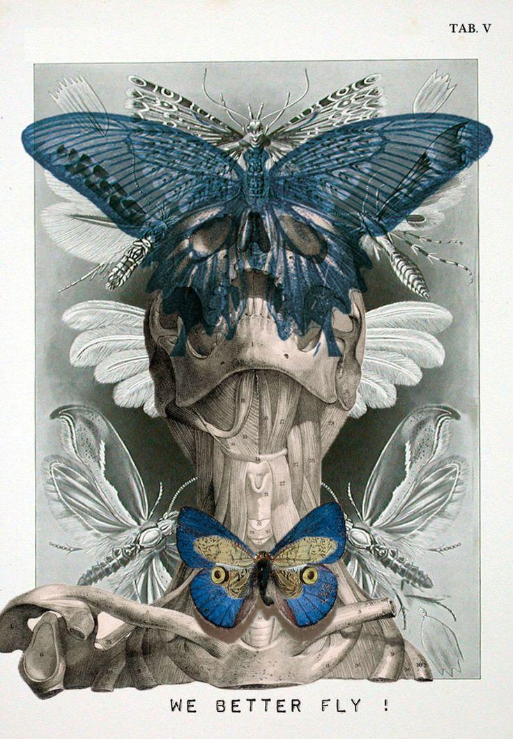 Isabelle Dalle y sus retratos de anatomía surrealista