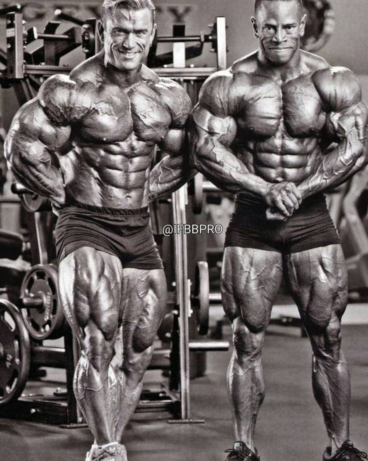 Amino Z Team Womens Weight Lifting Bodybuilding Gym: 17 Best Images About Grosos On Pinterest