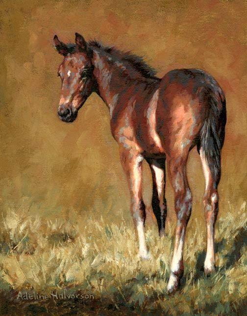 PRINT & FRAME Adeline Halvorson Artworks - Canadian Artist specializing in paintings of animals