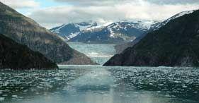 Shore Excursions - Juneau, Alaska - Tracy Arm Fjord & Glacier Explorer Cruise