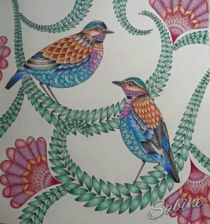 Birds Tropisch Paradijs