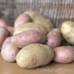 Ever wonder which kind of potato to use in a dish? We finally figured it out!