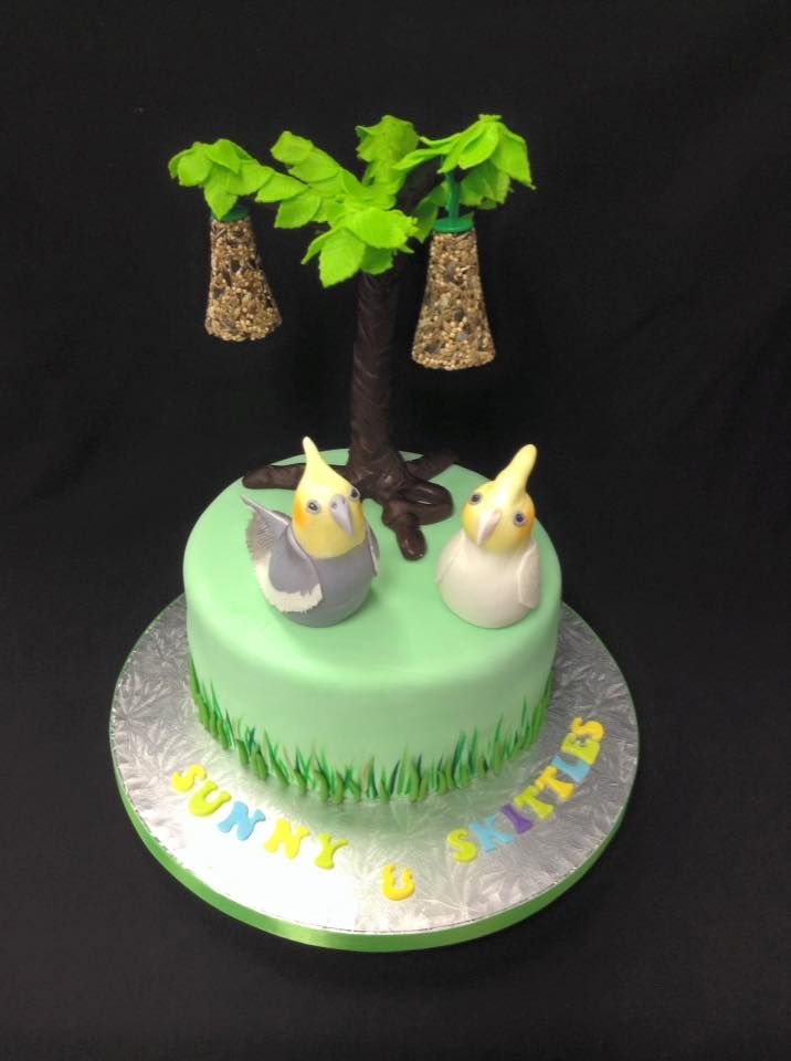 10th Birthday Cake for two special cockatiels :-) Something a big different and a bit special  - complete with two seed bells hanging from the moulding chocolate tree! Decorated by Coast Cakes Ltd