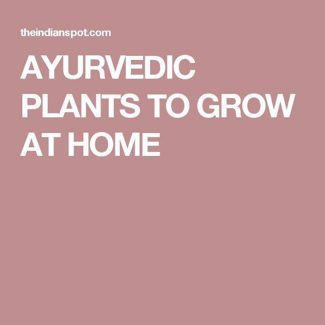 AYURVEDIC PLANTS TO GROW AT HOME