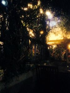 The Imbibe garden