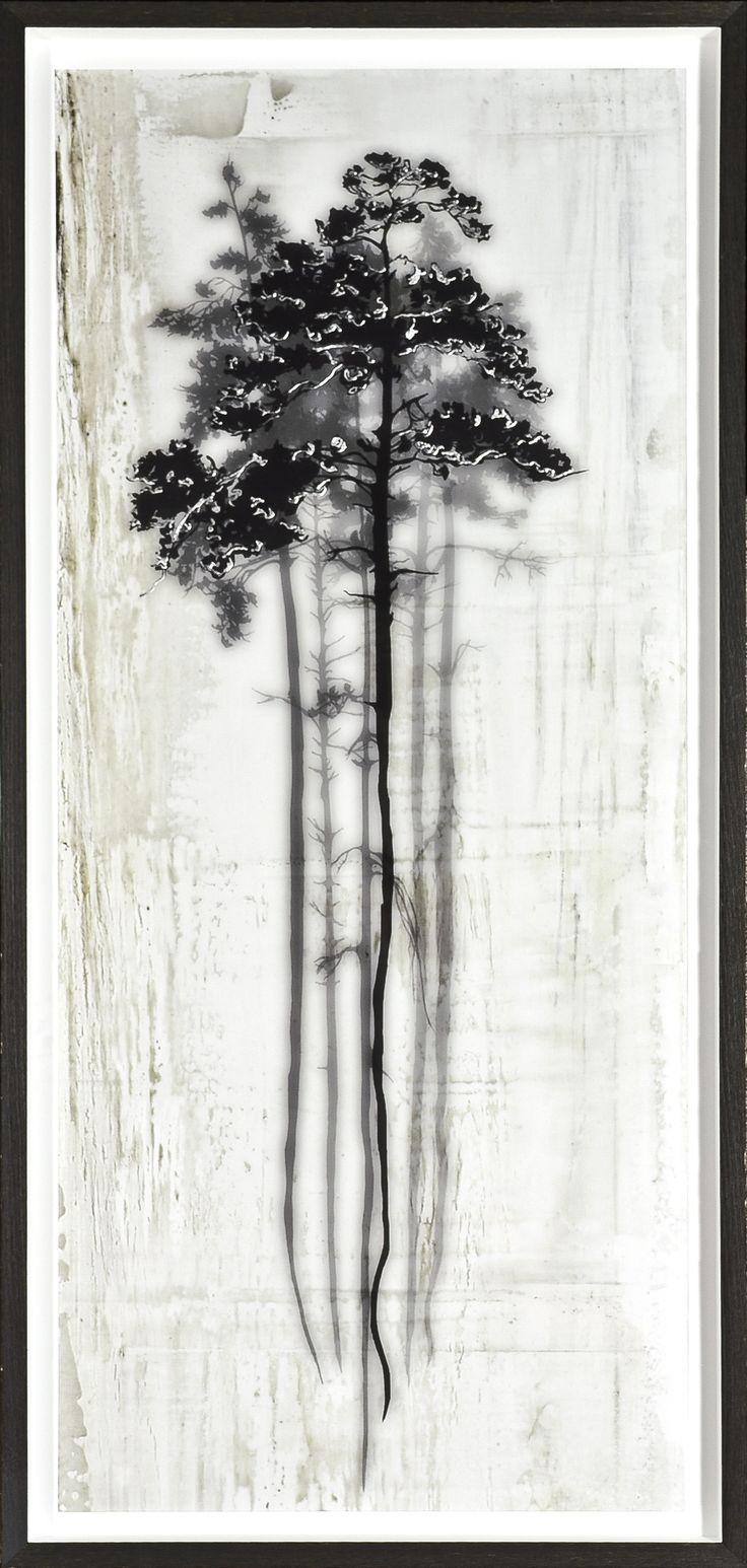Coniferous Overlay I