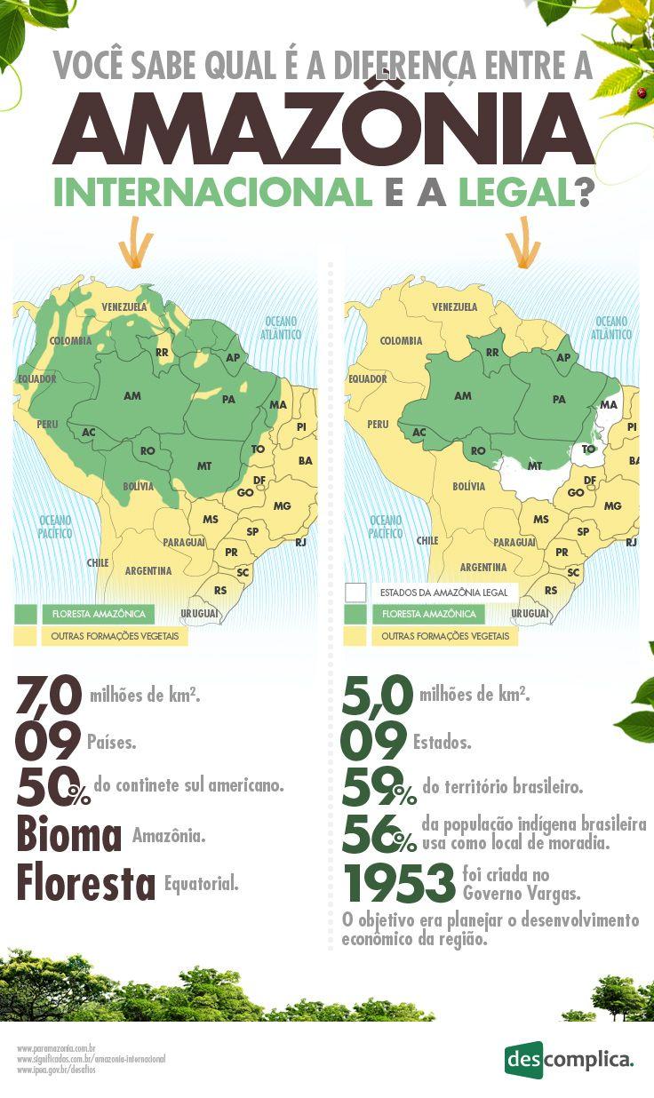 Infografico: Amazonia Legal x Amazonia Internacional