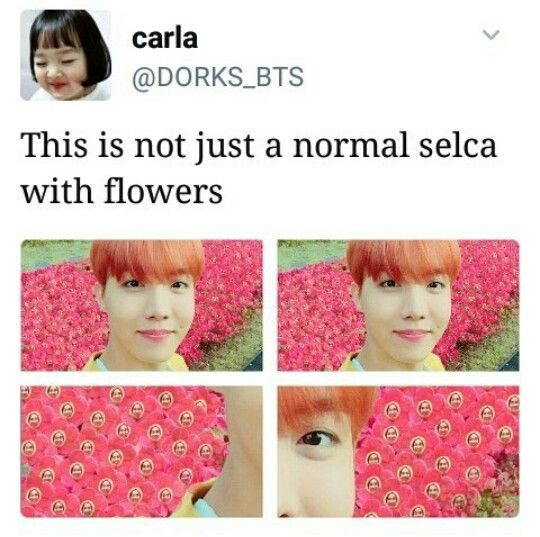 The fact that they took the time to photoshop Hobi's face into each and every one of those flowers is both amazing and terrifying.