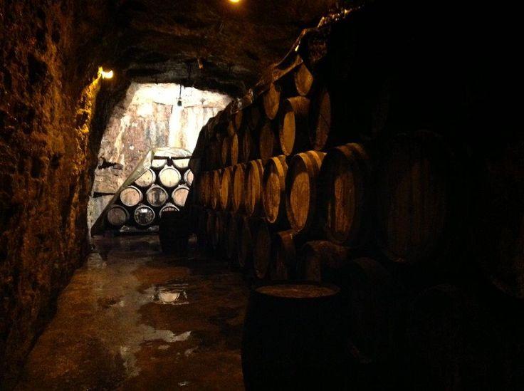 Cellars 2