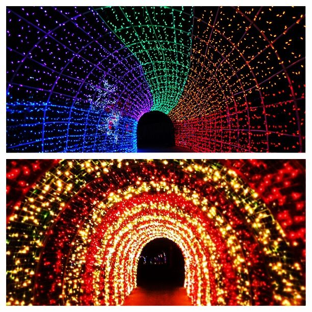 The tunnels of lights at the Cambria Christmas Market & the Oregon Garden Christmas Market! #christmas #california #oregon