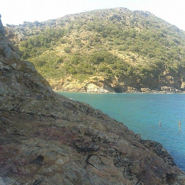 #ShareIG Passeggiata tipo #trekking  sugli scogli di #Ortano #RioMarina #isoladelba #isolaelba #elbadellemeraviglie  #elba200 #tuscany  #turistipercaso #tuscanygram #Island #insel #Elbaisland #inselelba