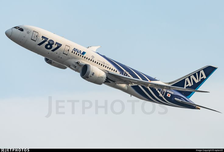 Photo of JA802A - Boeing 787-8 Dreamliner - All Nippon Airways (ANA)