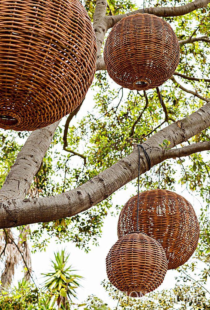 """Ruby Rattan"" light fixtures from Inner Gardens dangle from a tree, illuminating summer nights. - Photo: Laura Hull"