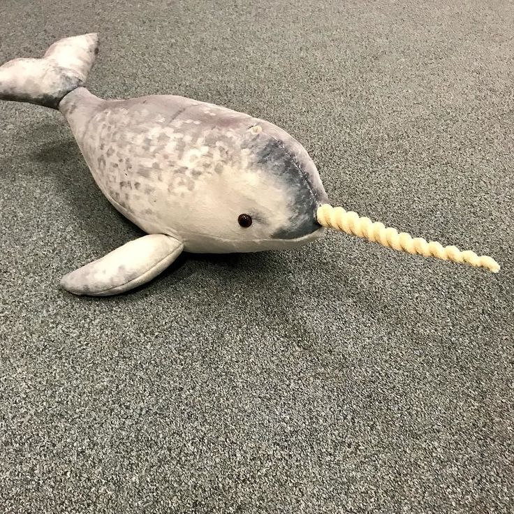 The unusual Narwhal is another new plush toy we will have