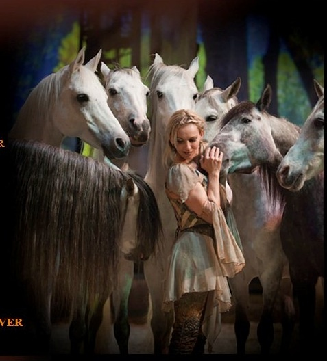 Cavalia - Liberty. As a horse lover, I think this is what all equestrians dream about at some point in their lives.
