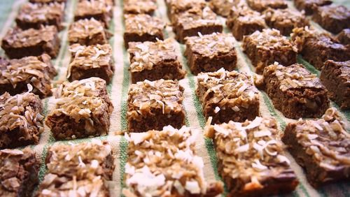 Fab Fit Friday: 20 Calorie, Low Carb Toasted Coconut Brownie Bites!