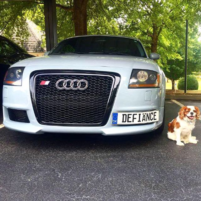 17 Images About Cars With Custom European License Plates