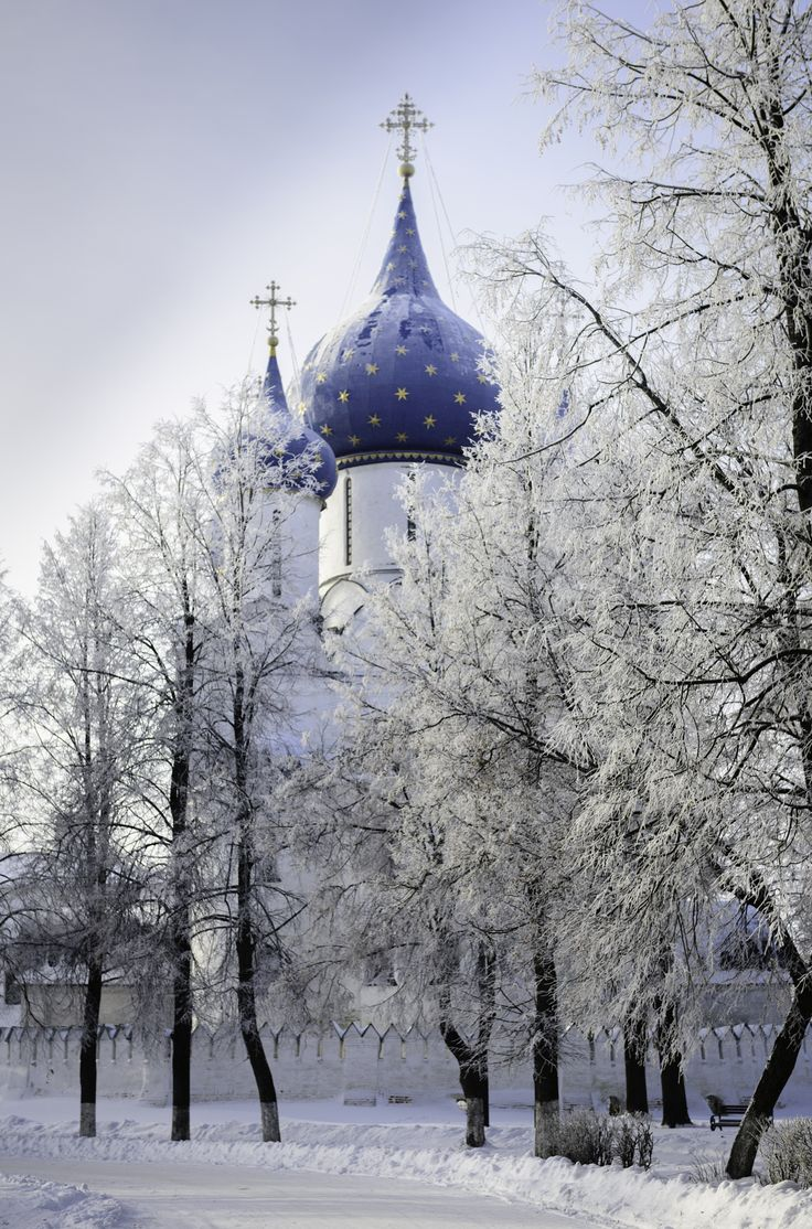 cathedral of the nativity of the virgin, suzdal, russia in winter