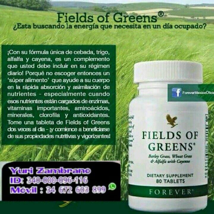 Obtén los mejores extractos vegetales para tu dieta. Fields of Greens combina jóvenes brotes de cebada, trigo, alfalfa y cayena. Ideal para tu dieta.