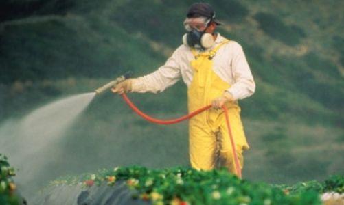 Uyarmıştık! Pestisitler gıdamızı zehirliyor