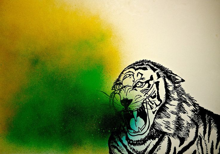 Tiger drawing, marker pen and spray paint