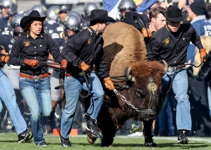 Be prepared for the Colorado scenario this weekend = Will Colorado make the College Football Playoff? No, it's not very likely. However, the Buffaloes' chances aren't quite zero. Moreover, a simple recollection of the 2007 college football season offers a reminder: Anything.....