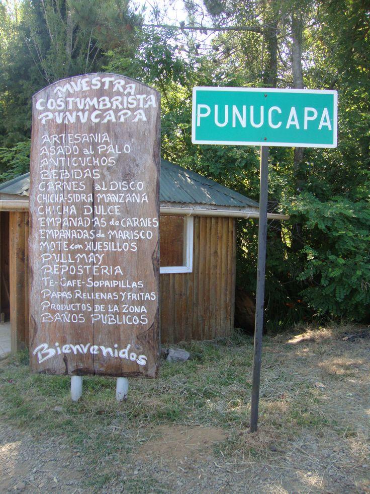 Bienvenidos a Punucapa