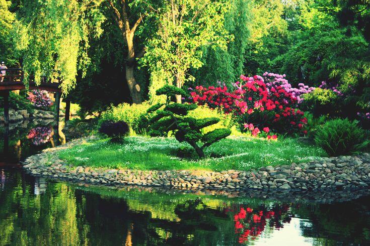 Jardín japonés.