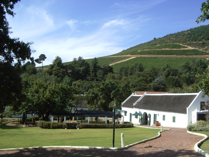 Wine tasting in the Cape Winelands.