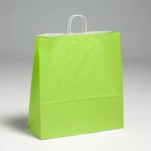 Lime Green Premium Paper Carrier
