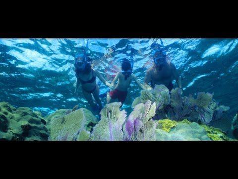 Key Largo: Snorkeling in the Keys at John Pennekamp State Park