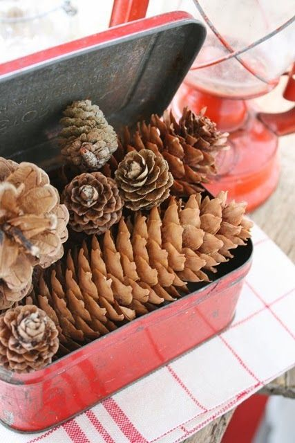 What a cute idea to do with cookie tins with hinged lids.  Spry paint, add pinecones or greenery and voila!  love it!
