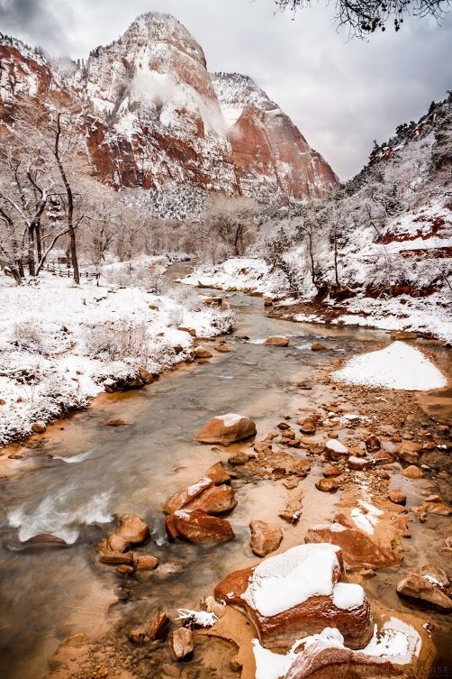 Winter Weathering- Zion National Park, UT  //Love this so much had to pin to another board EL//