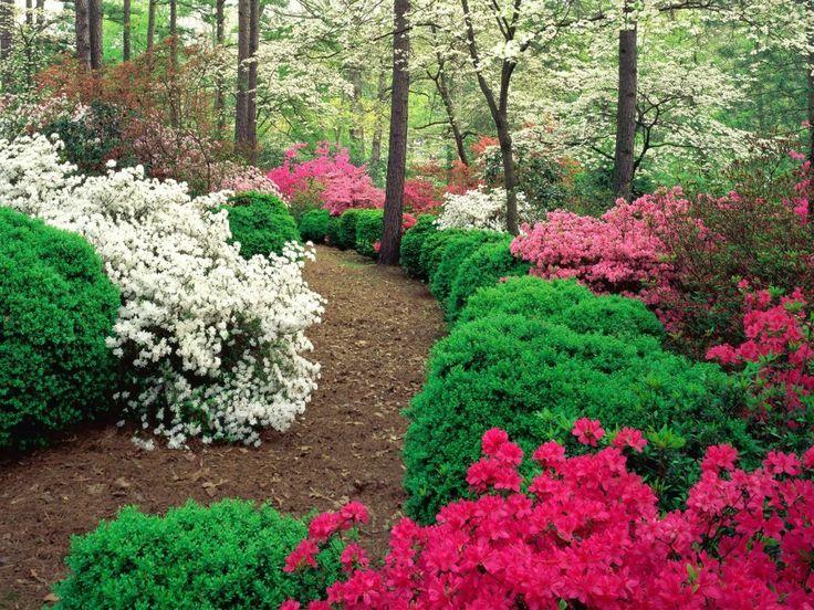 309 best garden design images on pinterest | garden ideas, gardens