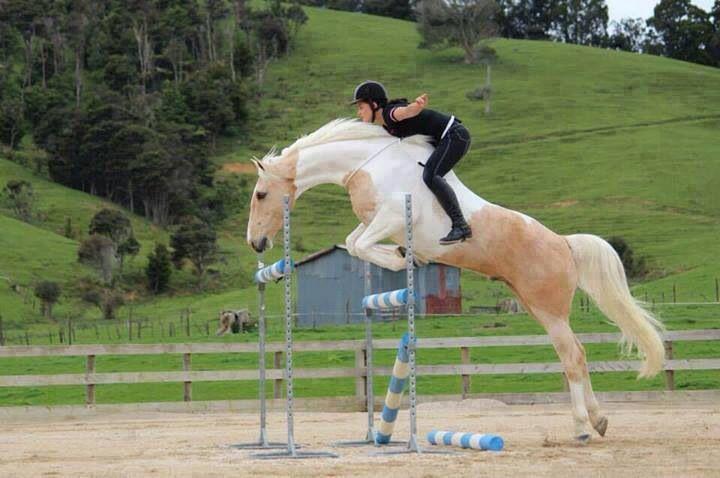 La confianza con tu caballo es algo increíble... El vínculo que sientes con tu caballo es único ♥
