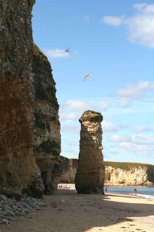 the cliff and beach of Marsden Bay England