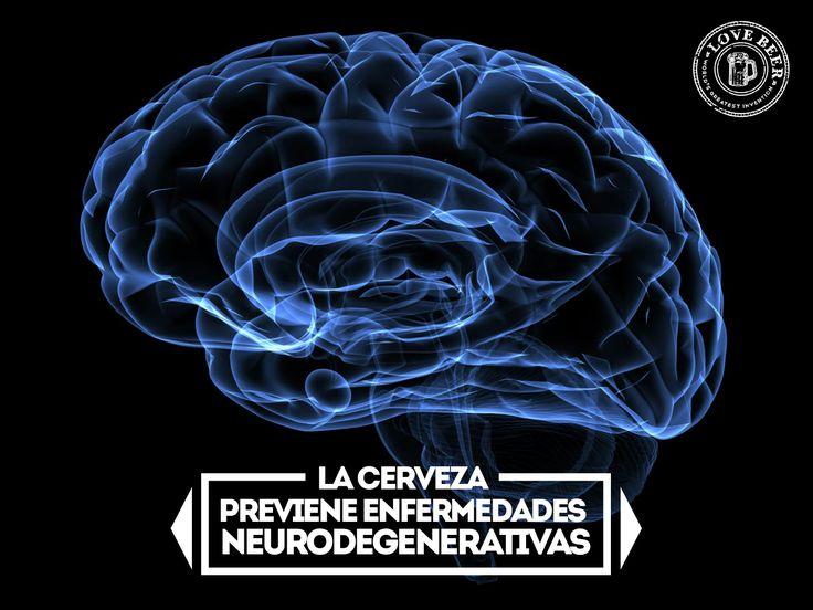meme_cerebro