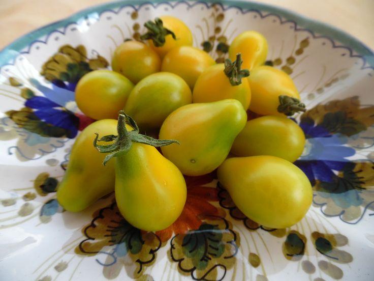 Pomodorini pera gialli