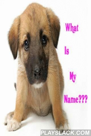 Cute Girl Dog Names App  Android App - playslack.com , Find 500+ awesome girl dog names app for your beloved dogs or puppy. Get the best name for them now ! We hope you like it. It is all FREE.We guaranteed you that all of these female dog names are really updated , cute , cool , popular and suit your dogs well :-)We enjoy doing this app and we hope you will too. :-)Any feedback / complaints / questions regarding this app, please email usThanks