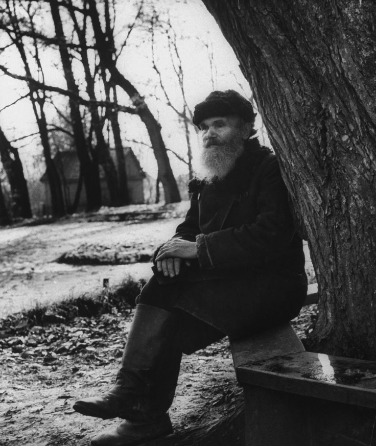 prior pinner: Leo Tolstoy
